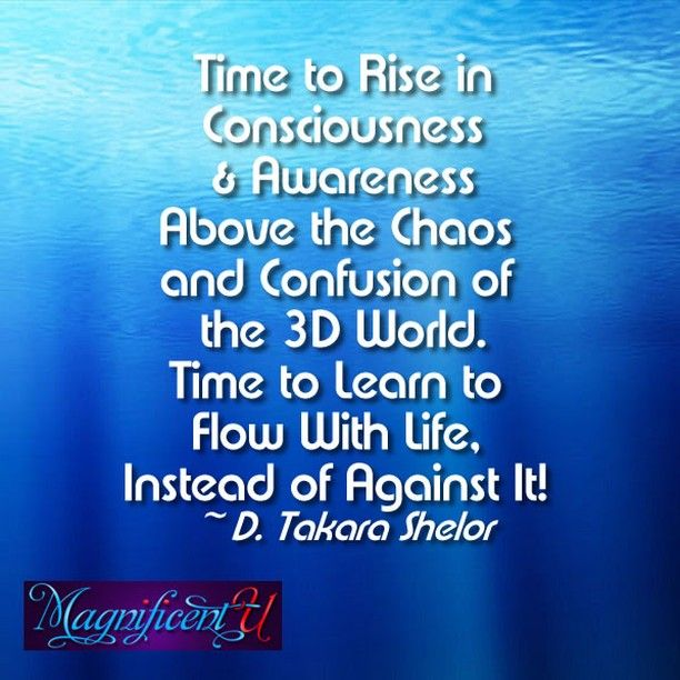Discover Your True Magnificence with Bestselling Author D