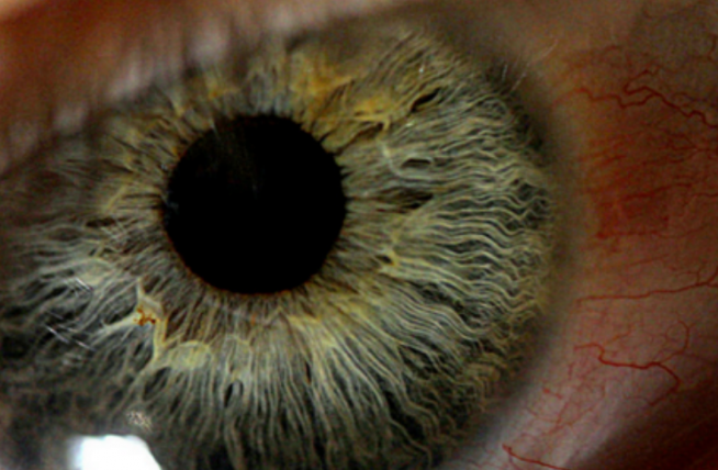 Diez tips para evitar los ojos cansados
