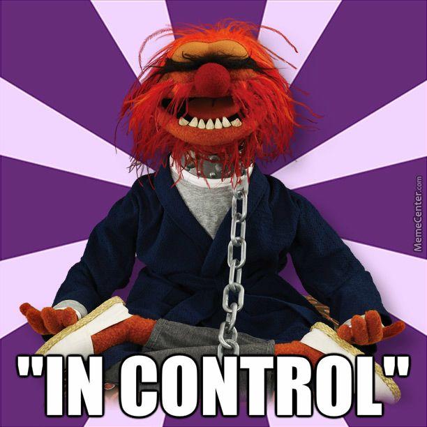 Muppet Christmas Meme: Animal Muppet, Meme And Memes
