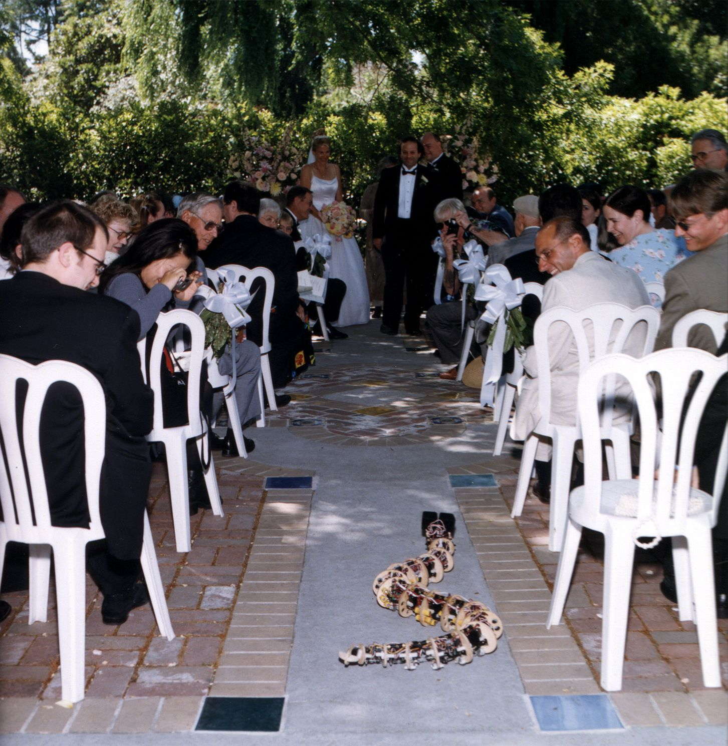 you know it is a nerd wedding when the ring bearer is a robot snake fun pinterest thats hilarious cats and wedding - Wedding Ring Bearer