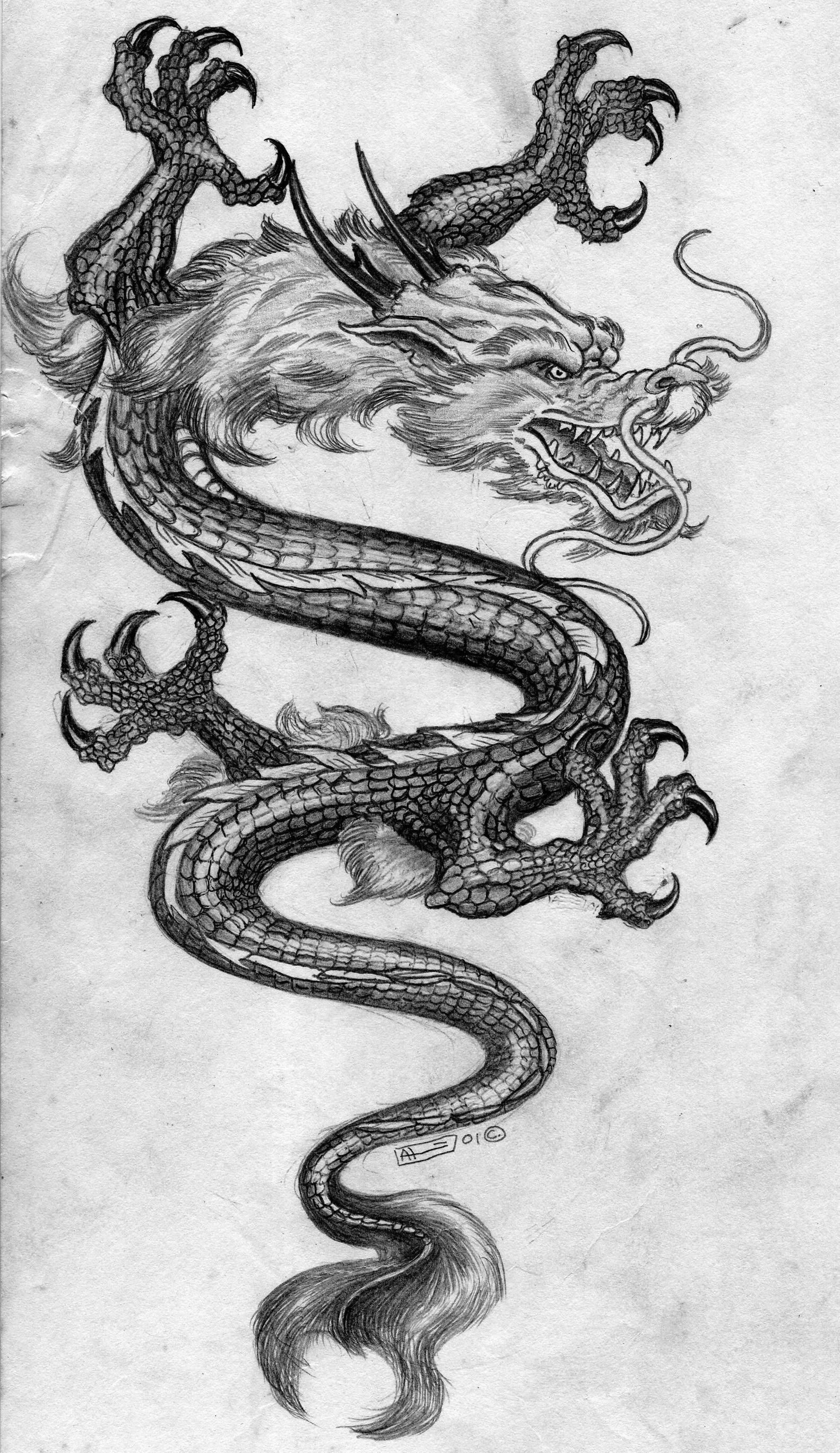 Chinese dragon pencil sketch