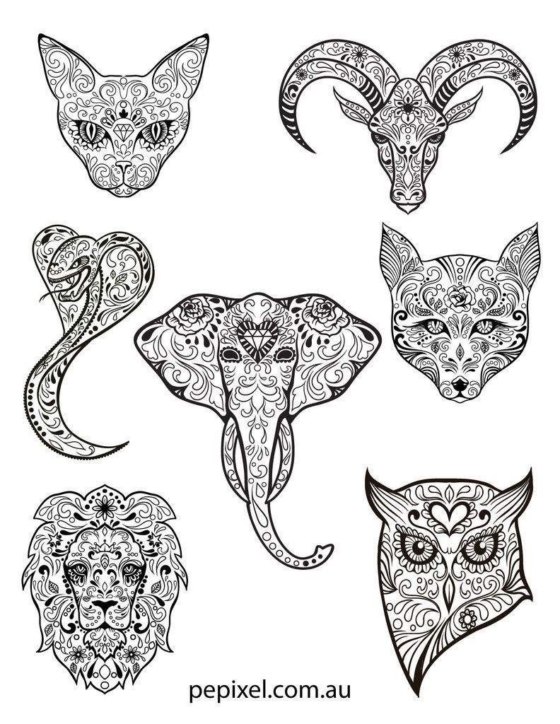 Animal Sugar Skulls Day Of The Dead Halloween Coloring In
