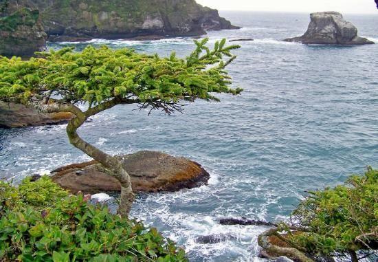 Neah Bay Washington