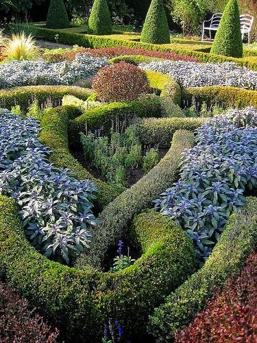 Beautifully designed celtic knot garden backyards click for Herb knot garden designs