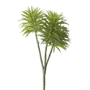 Tige De Plante Grasse 9 5 Succulents Artificial Succulents