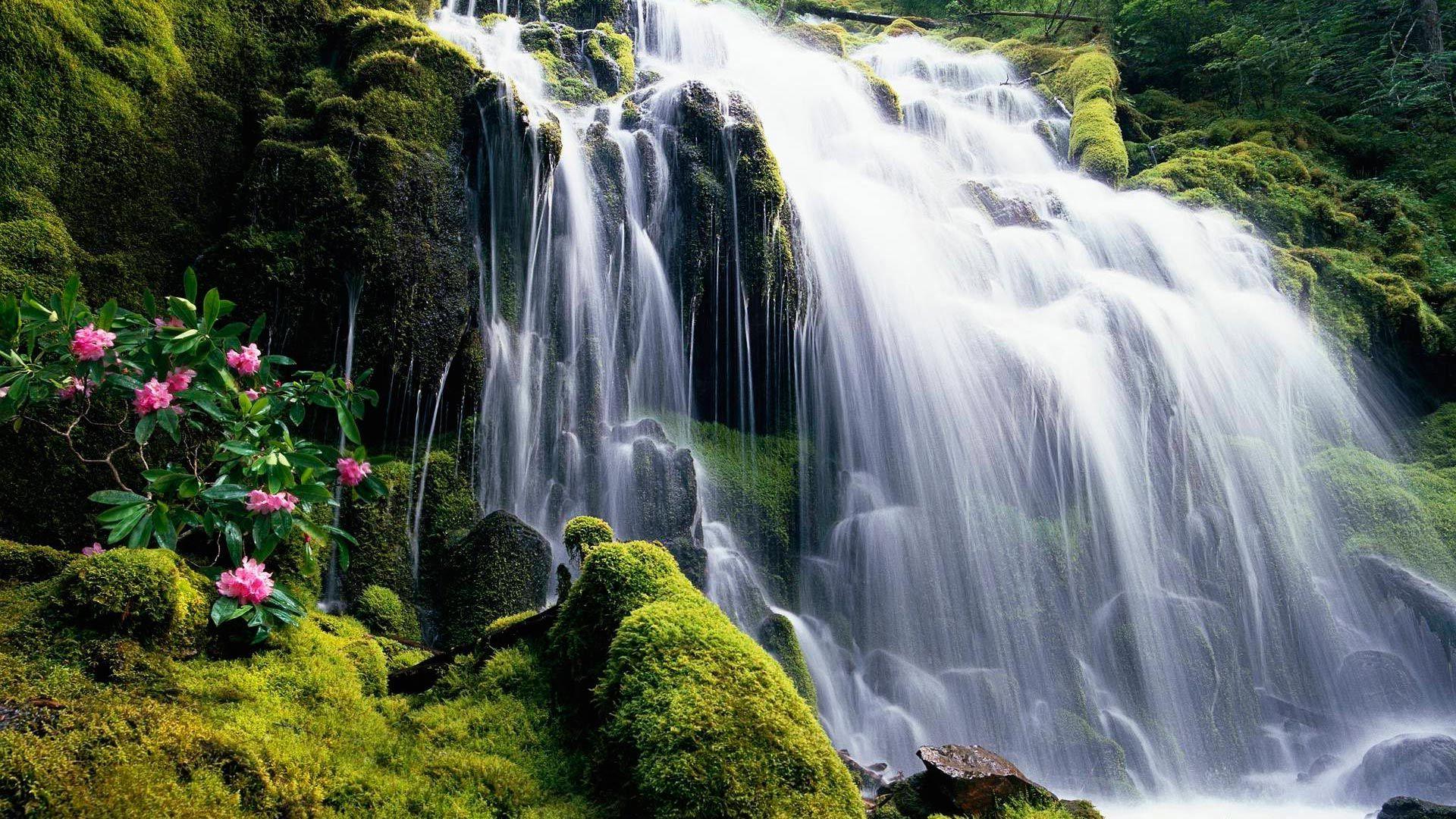 Обои водопад. Природа foto 16
