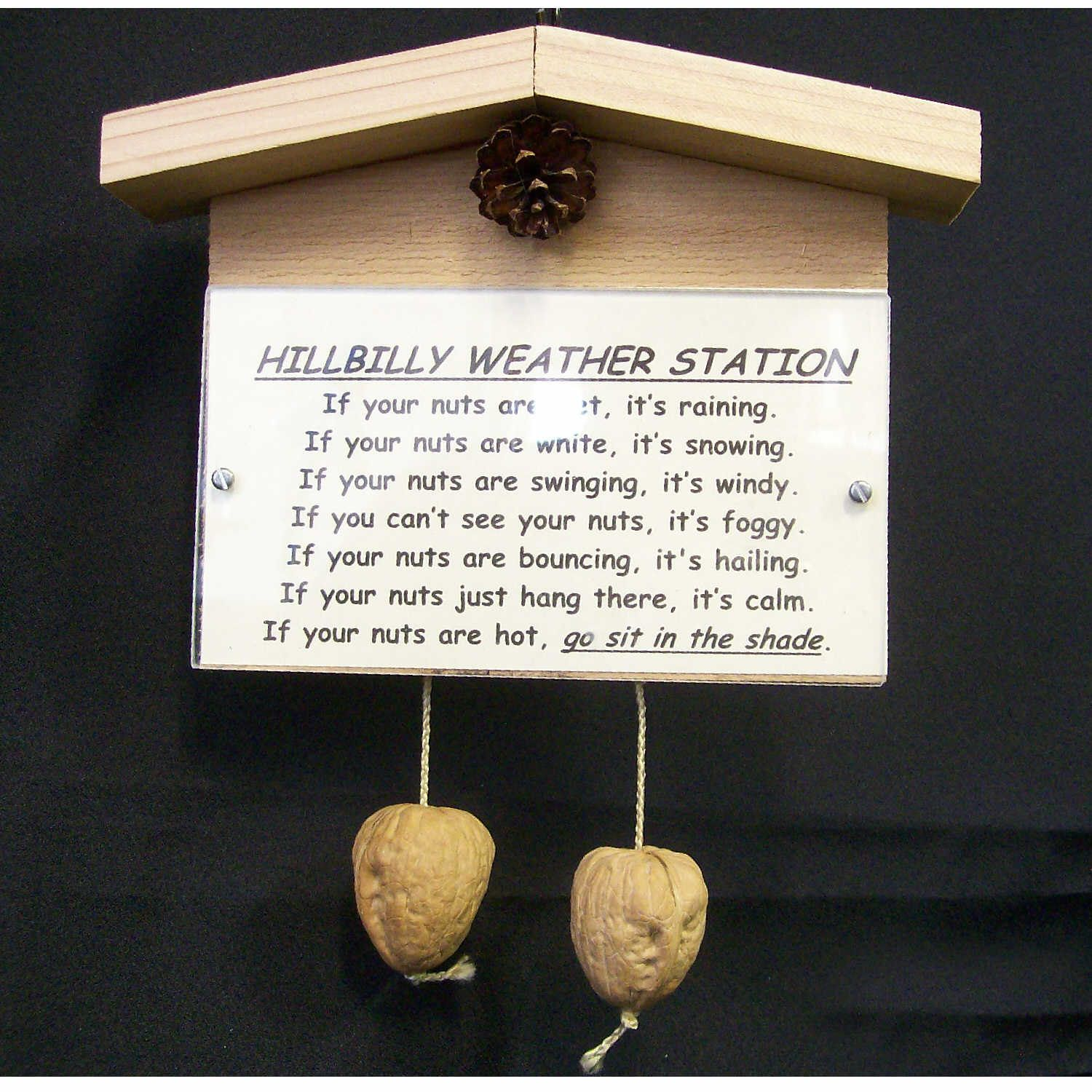 Gag Gifts For Christmas Party: Hillbilly Weather Station For Hillbilly Degree