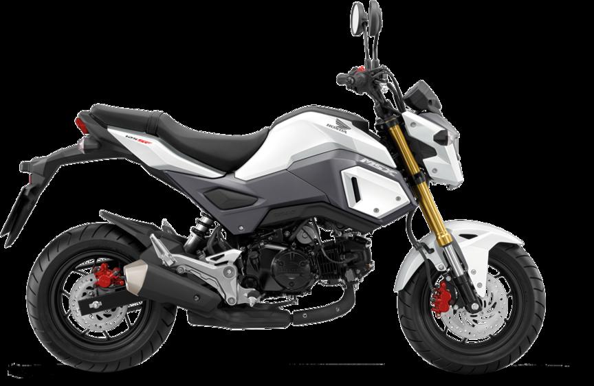 Honda Msx125 Freestanding On White Background Honda Grom Honda Msx 125 Grom Motorcycle