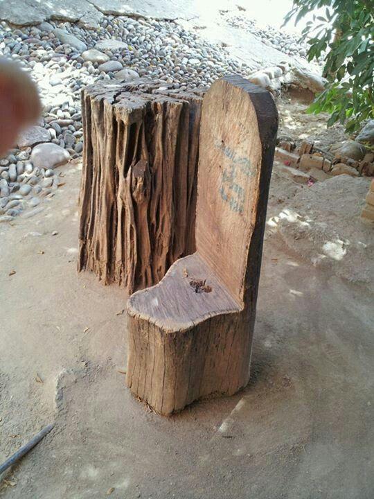 San javier sinaloa mexico silla hecha a mano de un - Troncos para jardin ...