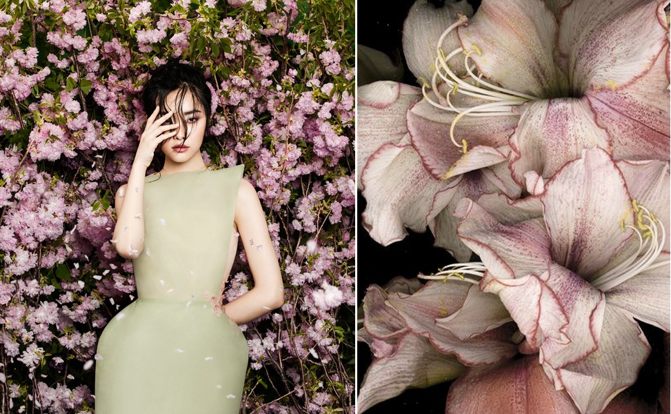 "1.Kwak Ji Young in ""Flowers Bloom"" by Zhang Jingna for Fashion Gone Rogue, June 2014"