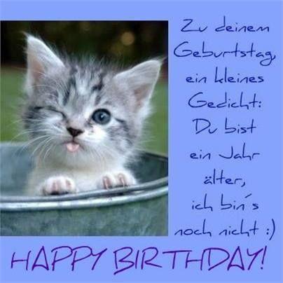 Geburtstagswunsche katze whatsapp