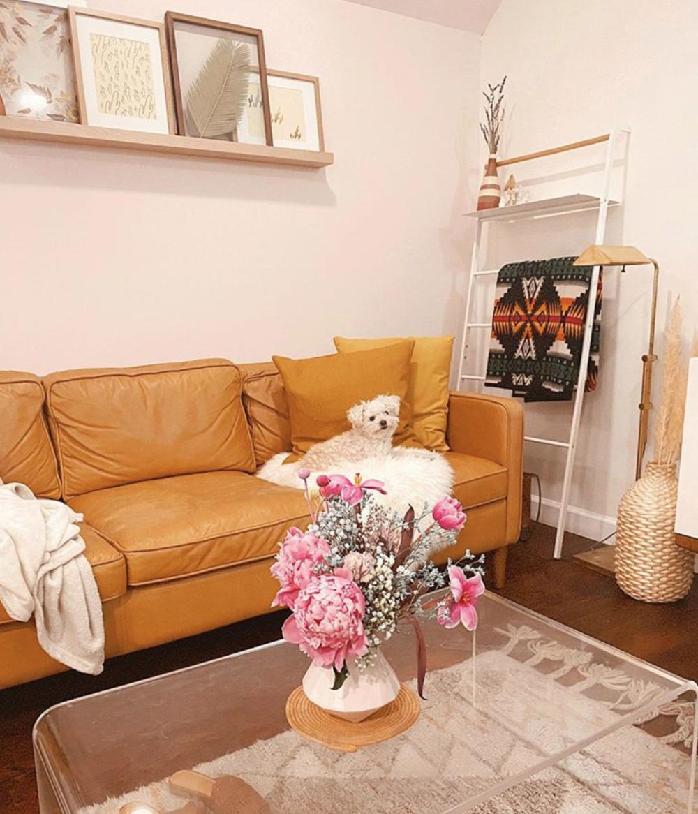 #apartmentbrooklyn #smalldog #homedecorminimalist #flowers