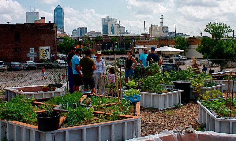 Around the world, urban farms and gardens are cultivating ...