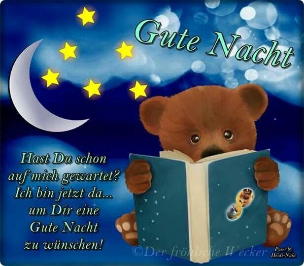 Pin von Hannes Lore auf Gute Nacht | Gute nacht, Nacht, Gute nacht grüße