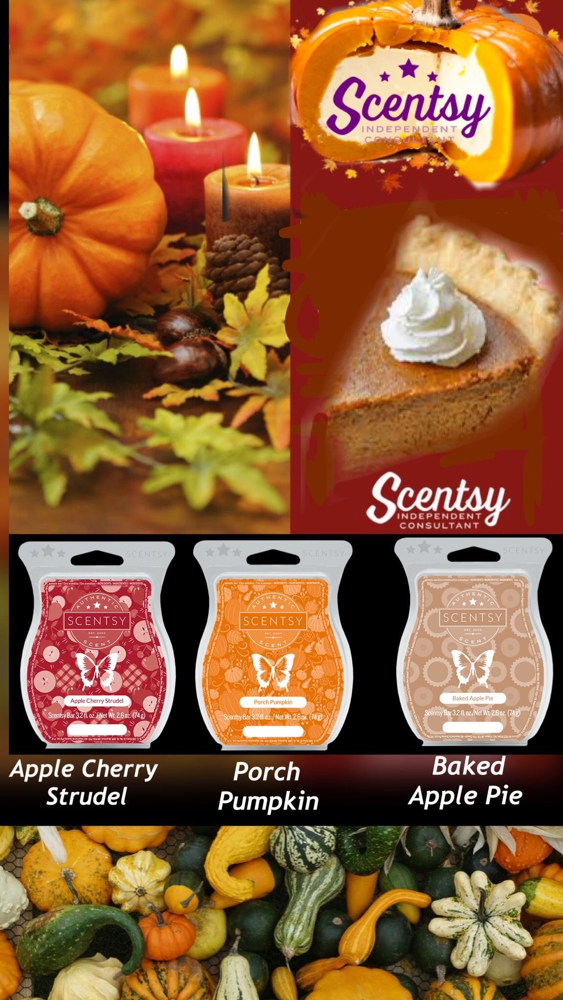 Pin On Scentsy