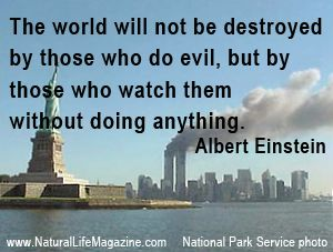 """""""The world will not be destroyed by those who do evil, but by those who watch them without doing anything."""" ~ Albert Einstein"""