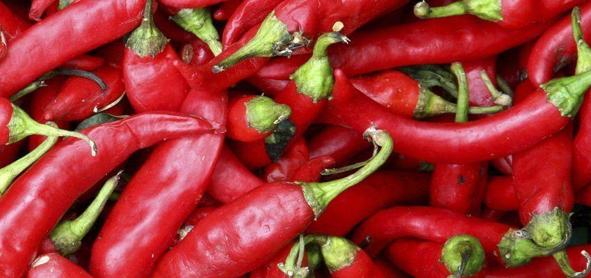 Conheca 7 Poderosas Simpatias Com Pimenta Vermelha Simpatia Com