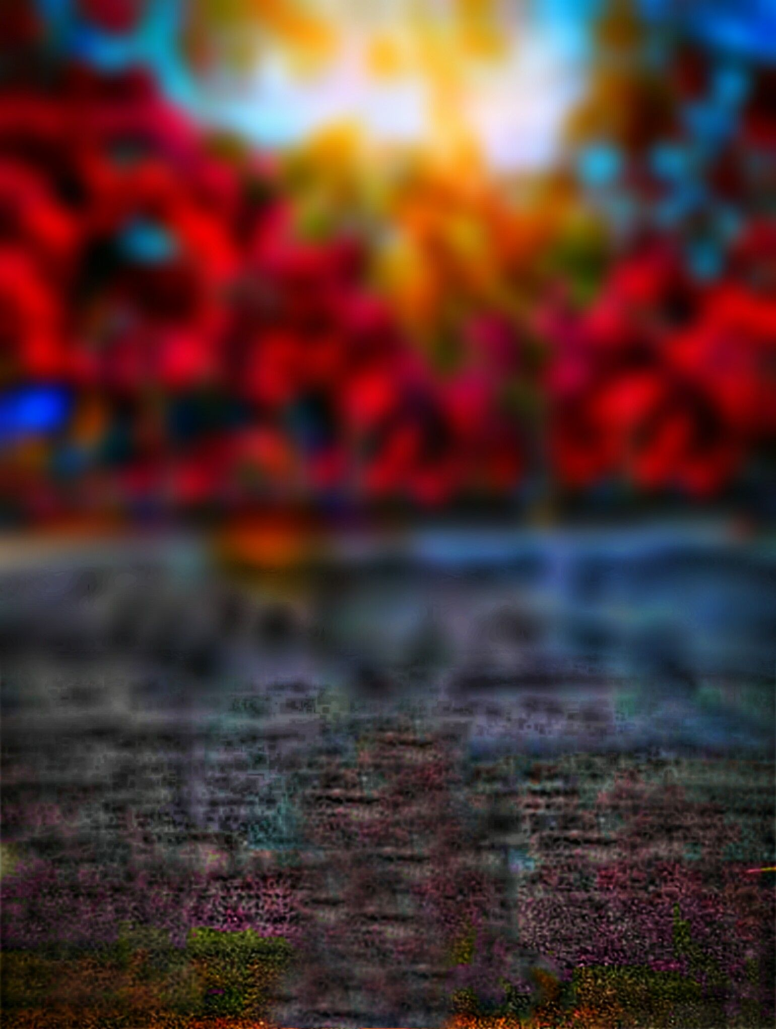 Related Image Blur Image Background Photo Background Images Blur Photo Background
