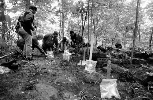 Workers dig for evidence in the woods near the Bath, Ohio