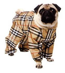 Buy burberry dog coat  Free shipping for worldwide!OFF66% The ... 643a0398ff34