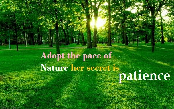 Inspirational Quotes Nature Wallpapers Inspirational Quote Quote Cover For Fb Scenery Wallpaper Scenery Beautiful Scenery Wallpaper