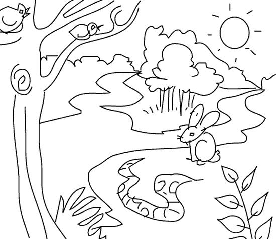 2o Awesome Jungle Coloring Pages http://procoloring.com/awesome ...