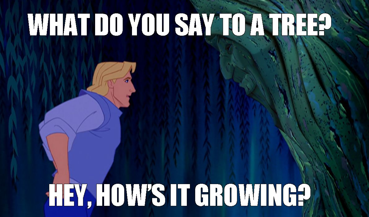 I was watching Disney's Pocahontas and this scene came up and I said to myself, I know exactly what you say to a tree.