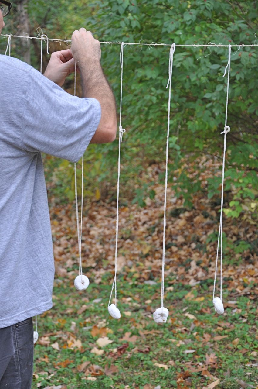 Party game for toddlers: hang donuts from strings and see how many ...