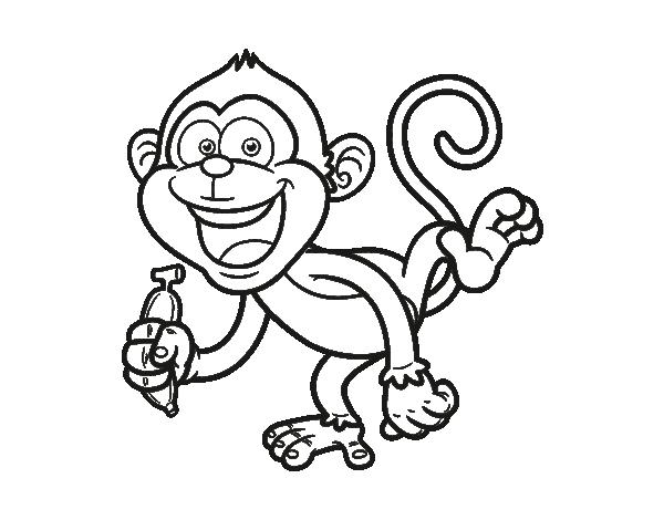 Dibujo de Mono capuchino para colorear | I°m°á°g°e°n°e°S°°°S°i°N°°°C ...