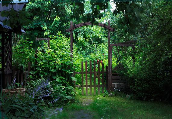 Great Ein ökologischer Wilder Garten Hat Seinen Ganz Besonderen Reiz.