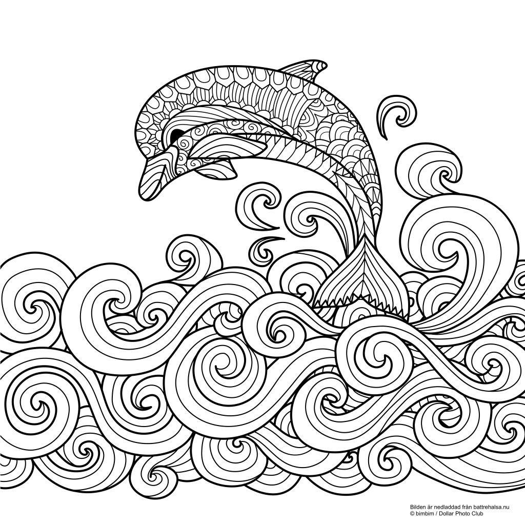 Gratis målarbild för vuxna – färglägg delfinen för en bra hälsa ...