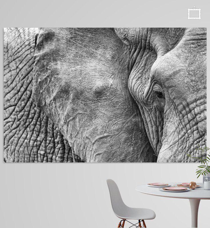 Photo of Elephant Eye Poster – Angelika Stern | OhMyPrints