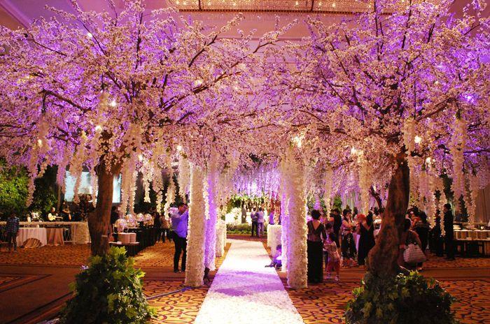 I Want These Trees Blossom Tree Wedding Tree Wedding Ceremony Wedding Tree Decorations