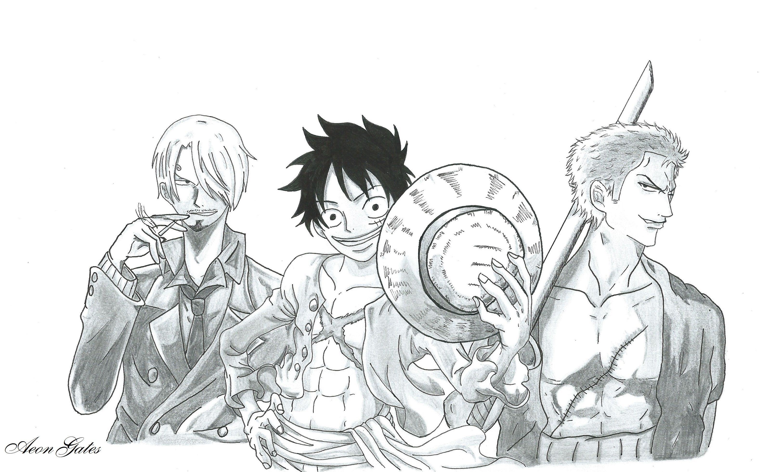 Hey Here Is A Commission I Made For A Friend As You Can See There S Monkey D Luffy Vinsmoke Sanji And Roronoa Zoro Of One Piece Luffy Zoro Art