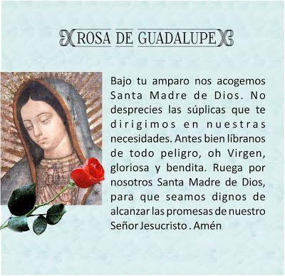Tarjetas y oraciones catolicas tarjetas virgen de guadalupe mi oraciones a jos y mara thecheapjerseys Choice Image