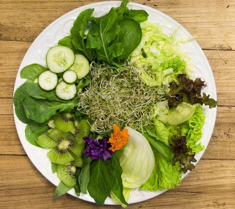 Salada Verde Kiwi, Agrião selvagem, Rúcula, Alface americano, Alface  francesa, Pepino japonês, Broto de alfafa, Aipo Ace… | Acelga, Alface  americana, Pepino japonês