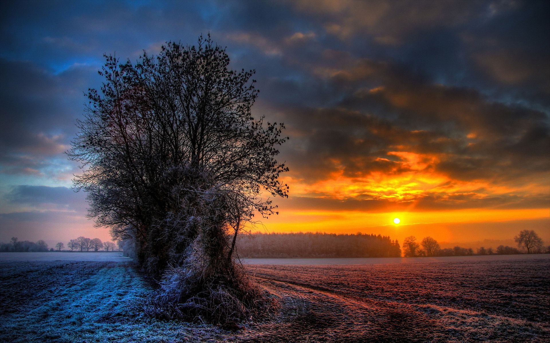 Winter Sunset Wallpapers Picture For Free Wallpaper Swoop Winter