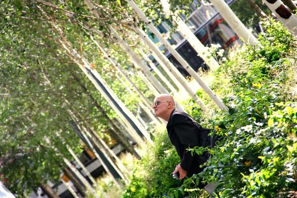 London urban garden - behind the Tate Modern | London ...