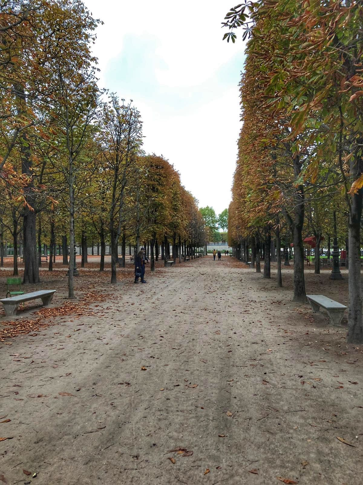Jardin des tuileries Country roads, Paris, Road