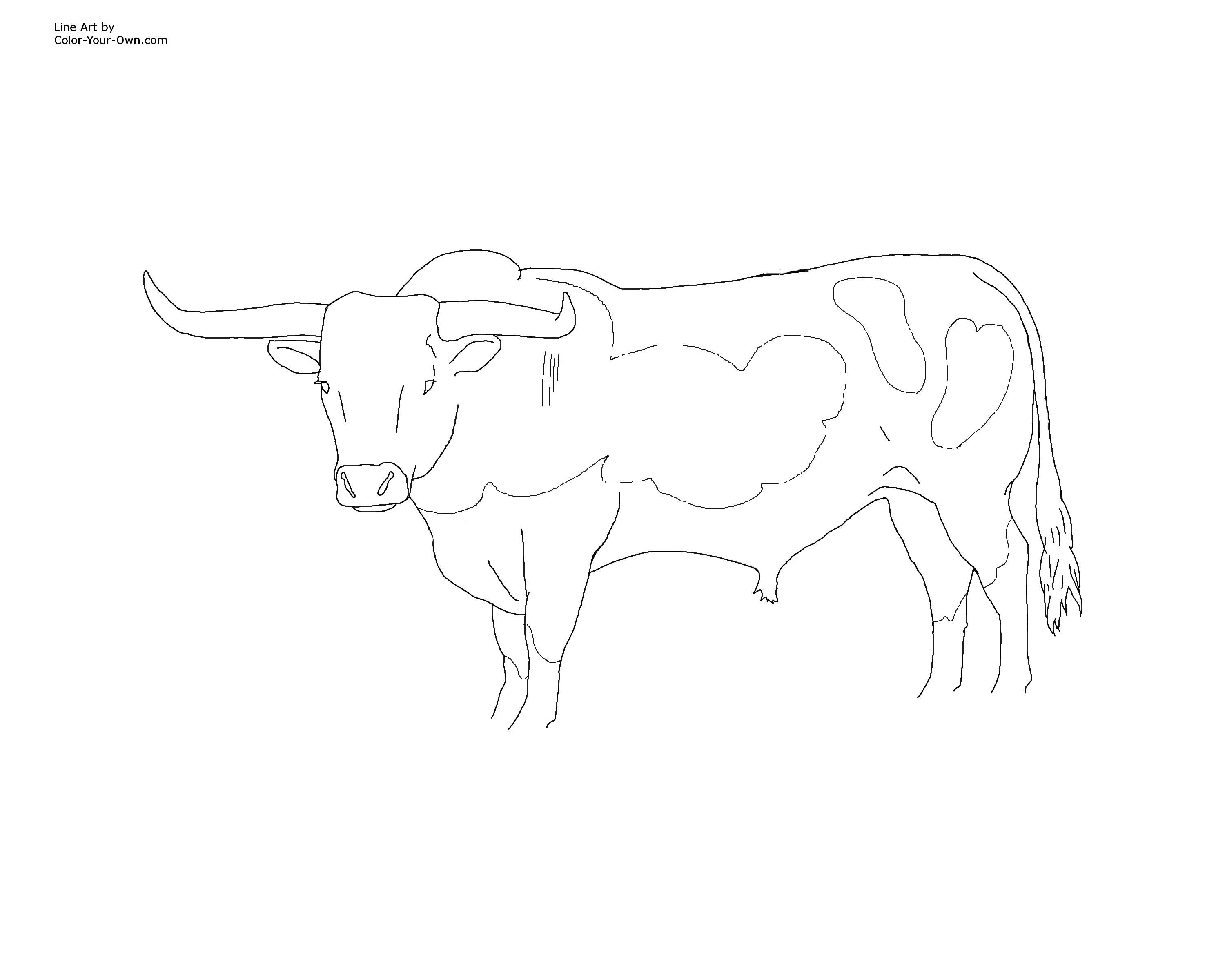 Bull coloring pages To Print | kids | Pinterest | Coloring books