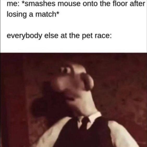 Pin On Meme