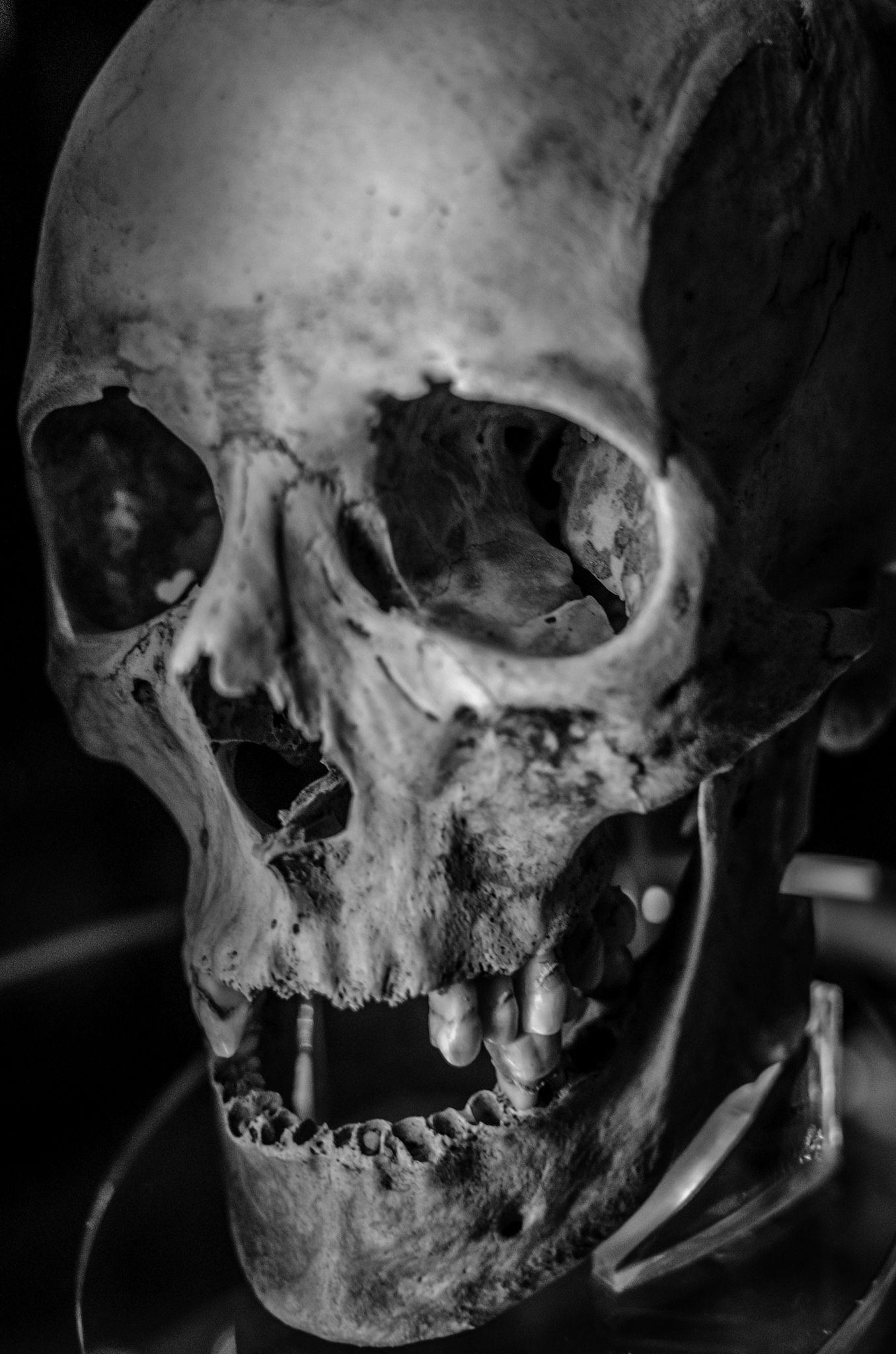 Human Jaw Tattoo: Tattoo Caveira, Tatuagem