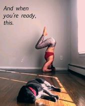 video for yoga lovers  #video #yoga #sport #fitness    This image has get 34 repins.    Author: Ayse...