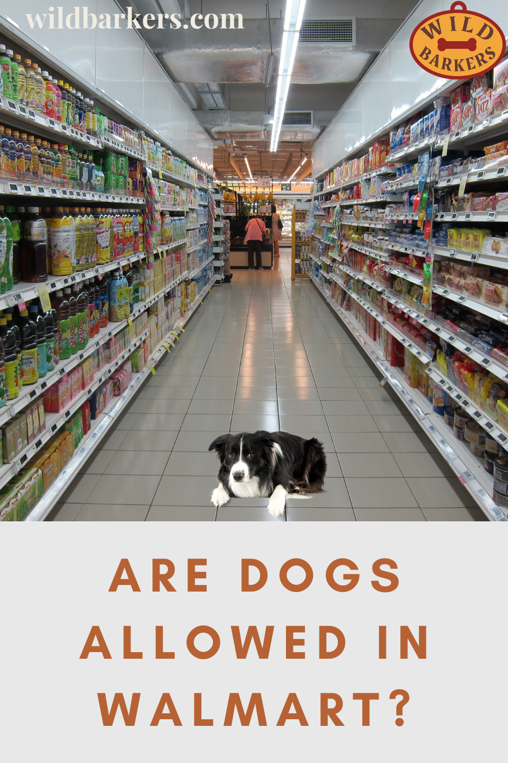 Are Dogs Allowed In Walmart In 2020 Dogs Service Dogs Walmart