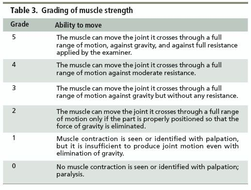Manual Muscle Testing Grading Scale  Ot Tests  Tx