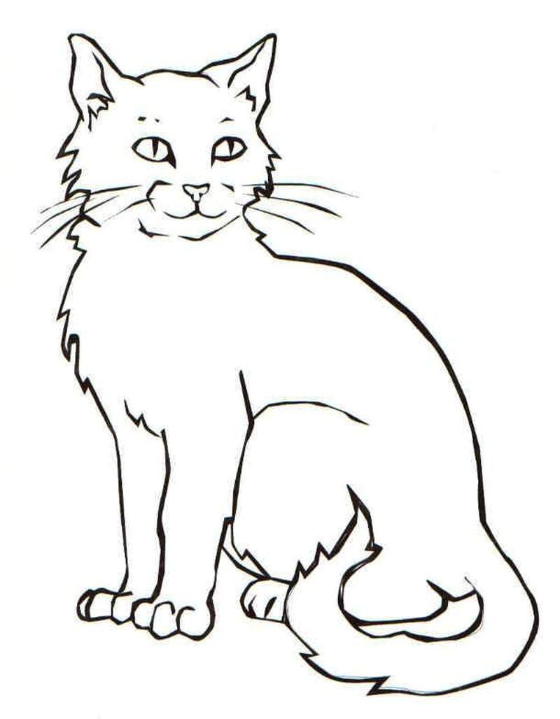 Kitten Cat Coloring Page Cats Cat Art