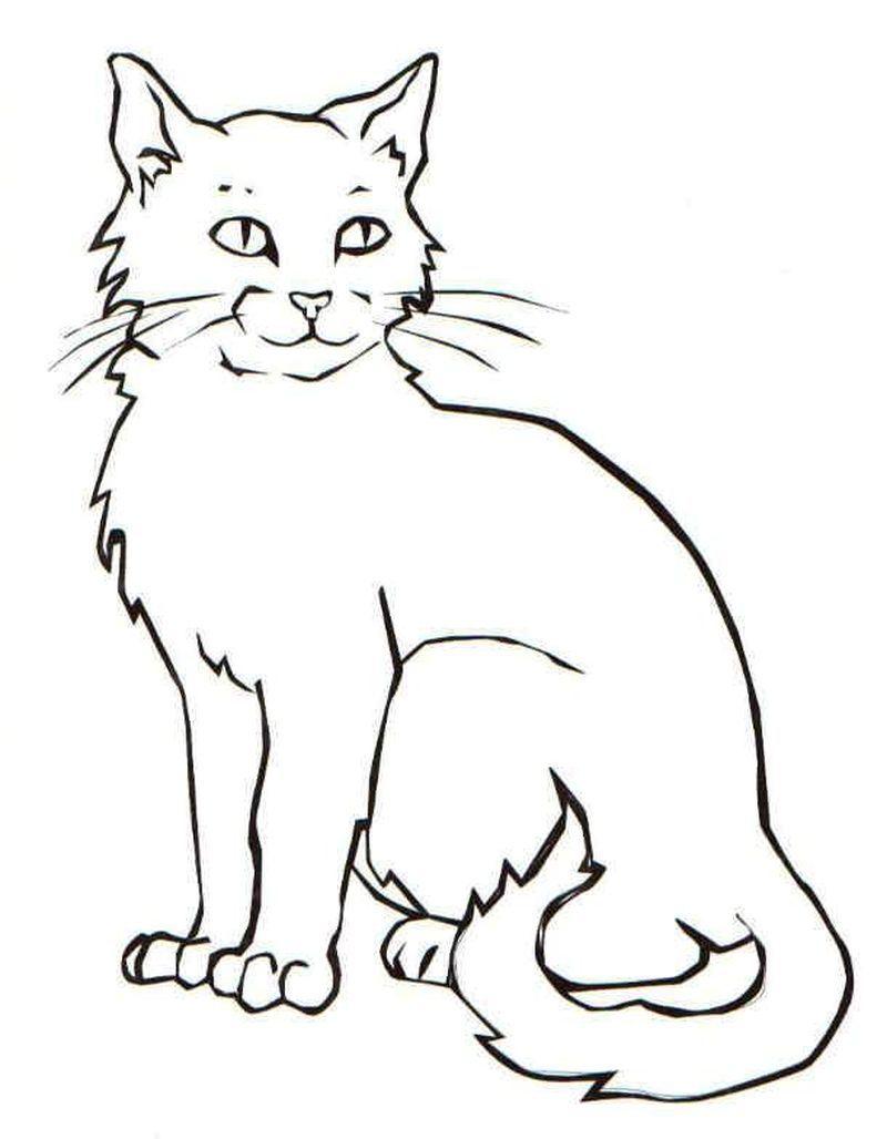 Gambar Kucing Sketsa : gambar, kucing, sketsa, Kitten, Coloring, Pages, Menggambar, Kucing,, Hewan,, Sketsa