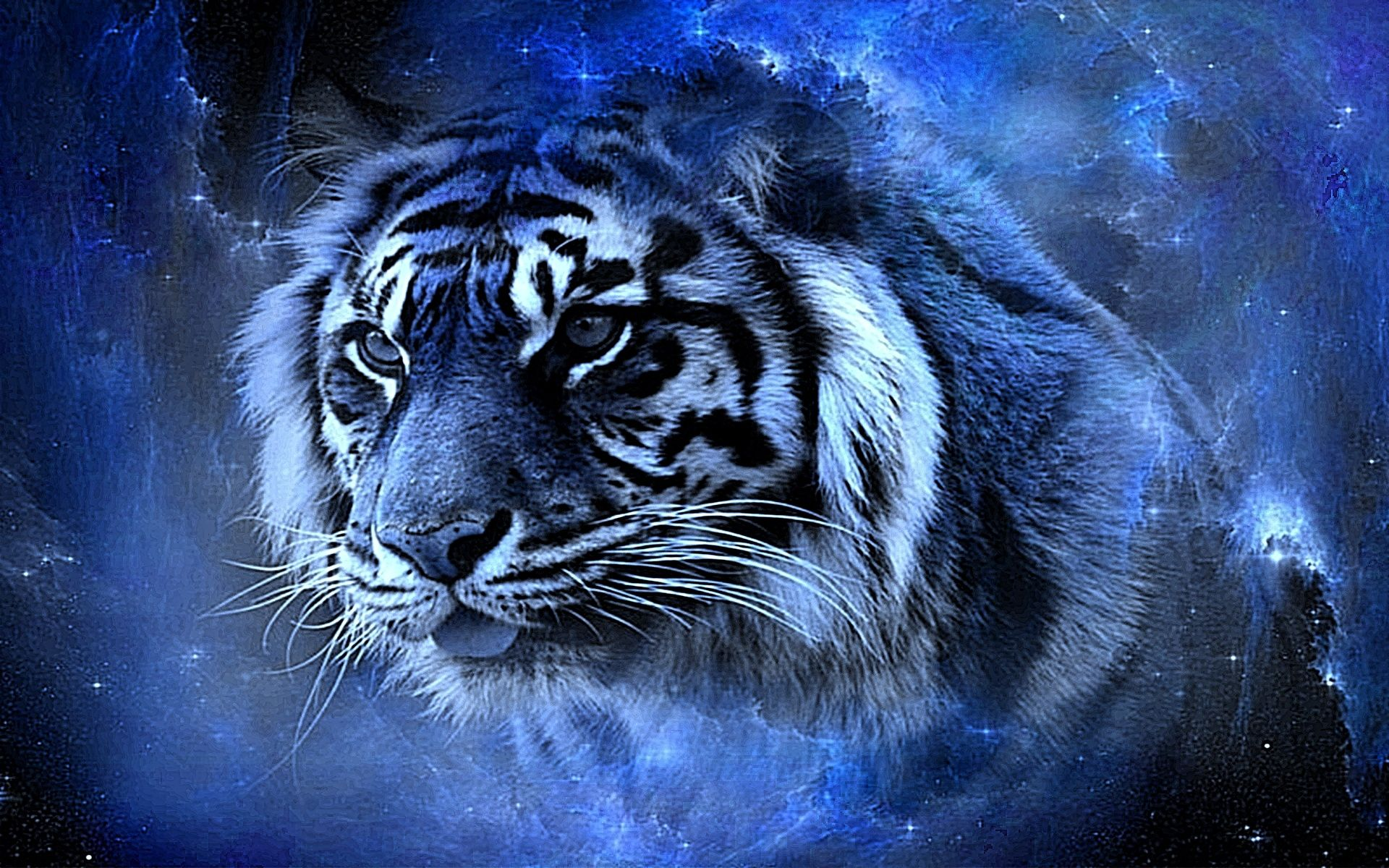 Tiger image 3d animals wallpapers pinterest tiger wallpaper tiger image 3d voltagebd Images