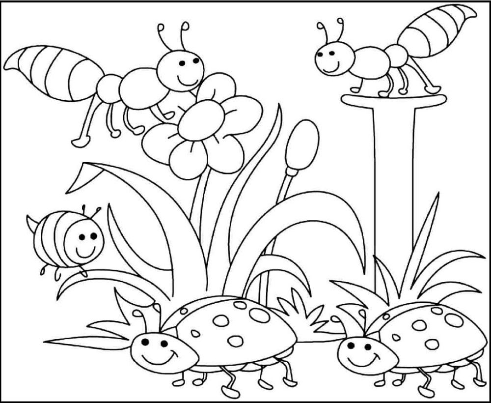 Free Children S Coloring Sheets Bug Coloring Pages Spring Coloring Sheets Insect Coloring Pages [ 820 x 1000 Pixel ]