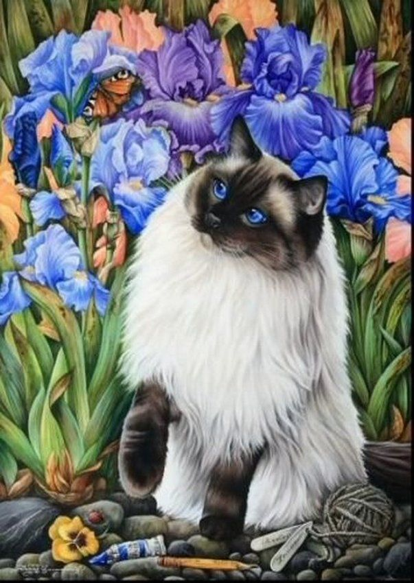 Ragdoll Cat Time Of Butterflies Print by I Garmashova